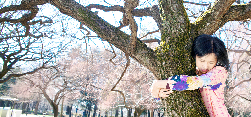 Hug Cafe,Kaori Sahara hugs a tree.
